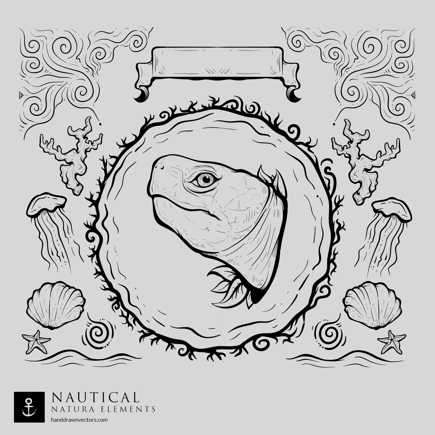 turtle nautical vector collection